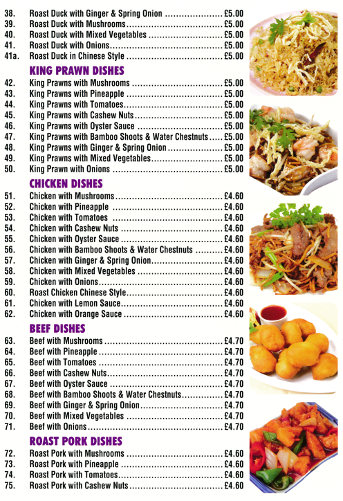 Menu for Golden Palace (Chop Suey, Peking Capital Sauce, Szechuan, Oyster Sauce dishes..)